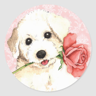 Valentin rosa Bichon Runt Klistermärke