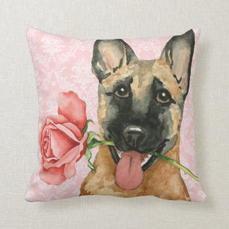 Valentin rosa Malinois Kudde