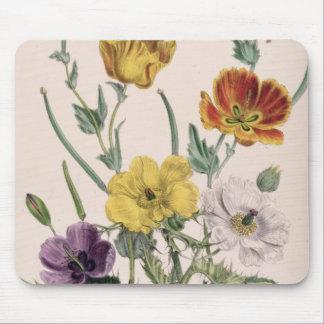 Vallmor och anemoner musmatta