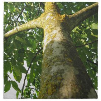Valnötträdstam med gul mosssvamp tygservett
