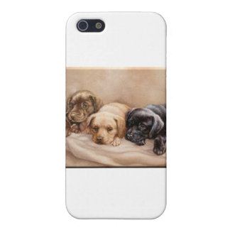 Valp för Labrador Retriever iPhone 5 Cover