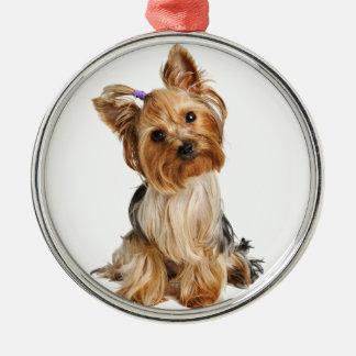 Valp för Yorkshire Terrier Julgransprydnad Metall