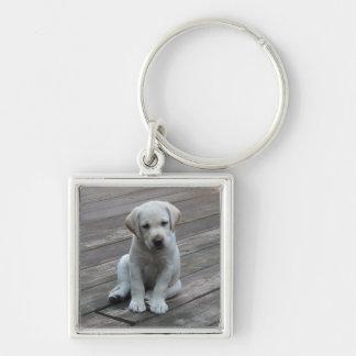 Valp Keychain för Labrador Retriever Fyrkantig Silverfärgad Nyckelring