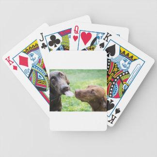 Valpkärlek Spelkort