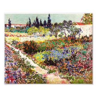 Van Gogh blommarträdgård på Arles blommigtkonst Fototryck