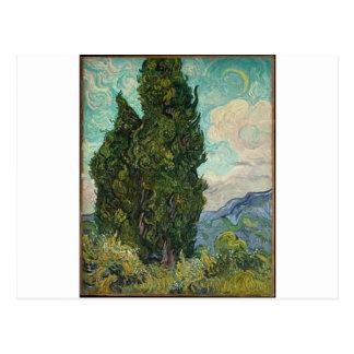 Van Gogh Cypresses Vykort