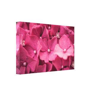 Vanlig hortensia canvastryck