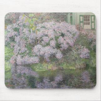 Vanlig hortensia på banker av floden Lys, 1898 (oi Musmatta