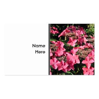 Vanlig hortensia. Rosa Flowers. Set Av Standard Visitkort