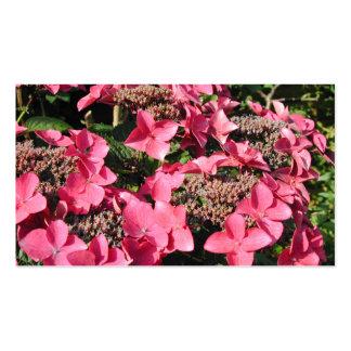 Vanlig hortensia. Rosa Flowers. Visitkort