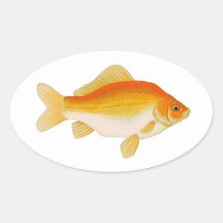 Vanligt guldfisk ovalt klistermärke