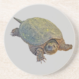 Vanligt låsande fast sköldpadda - Chelydraserpenti Underlägg Sandsten