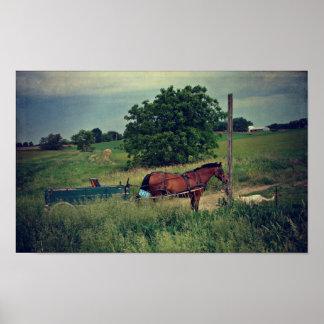 Vänta för Amish häst Poster