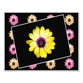 Vår blommor fototryck