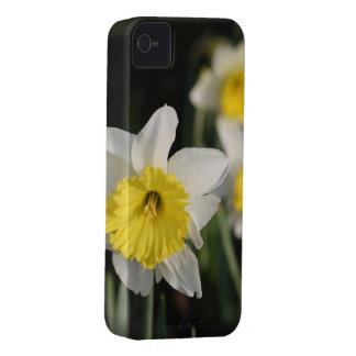 Vår blommor iPhone 4 skal