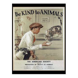 Var snäll till djur - vintage affisch vykort