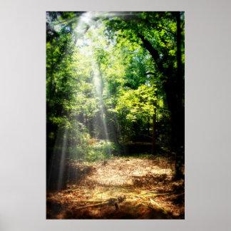 Var stilla skogen landskap affischen