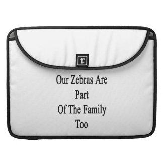 Vår zebror är delen av familjen för