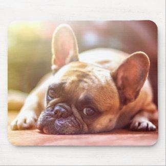 Vara slö runt om fransk bulldogg musmatta