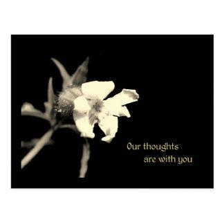 Våra tankar är med dig vykort