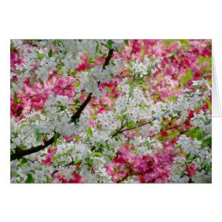 Vårblommarfärger Hälsningskort