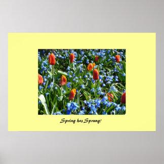 Våren har fjädrat affisch
