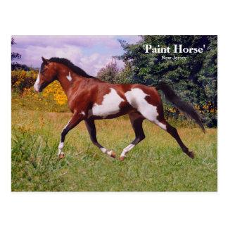 Våren målar hästvykortet vykort