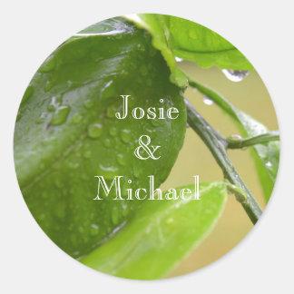 Våren regnar den gröna klistermärken