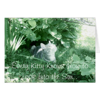 Varje kattunge vet hur man ser in i solen. hälsningskort