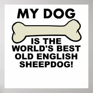 Världs bäst gammala engelska Sheepdog Poster
