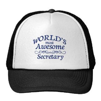 Världs mest enorma sekreterare keps