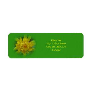 Vårmaskrosblomma, gröntetiketter returadress etikett