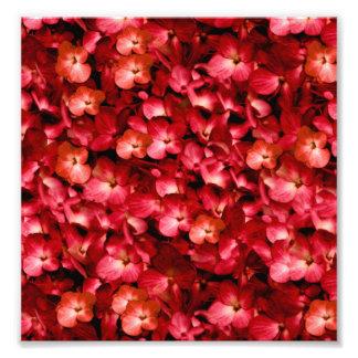 Varmt blom- Collagetryck Fototryck