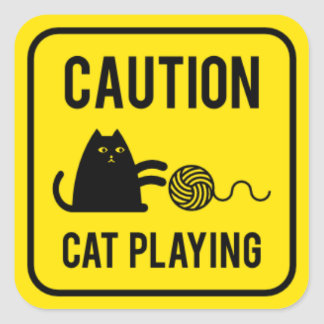 Varna - att leka för katt fyrkantigt klistermärke