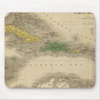 Västra Indies 7 Musmatta
