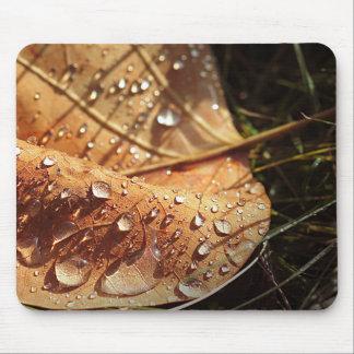 Vått höstlöv - Mousepad Musmatta
