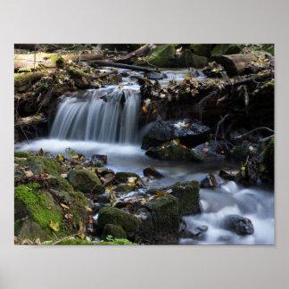 Vattenfall bland ogräsen poster