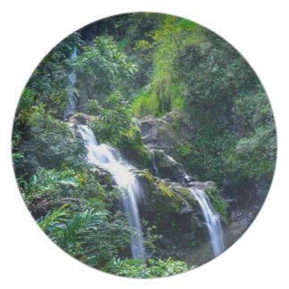 Vattenfall i Maui Hawaii Tallrik