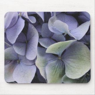 Vattenfärgvanlig hortensia 3 musmatta