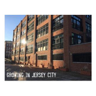 Växa i Jersey City - skjuten invallning Vykort