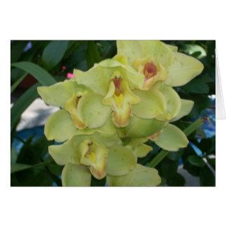 Växthuset blommar fyra hälsningskort