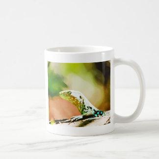 Vectored ödla från Aruba Kaffemugg