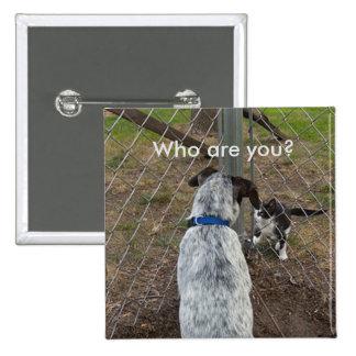 Vem är dig katten/hunden standard kanpp fyrkantig 5.1 cm