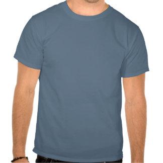 Vi är oförskräckta t shirt