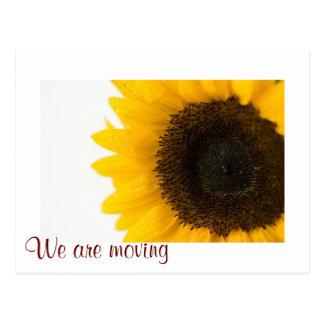 Vi flyttar oss med den nya adress solrosen vykort
