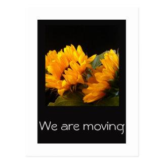 Vi flyttar oss med nya adress solrosor vykort