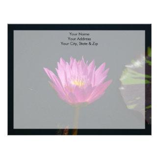 Vibrerande purpurfärgad lotusblommanäckrosblomma brevhuvud