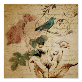 victorianfågelParis steg franskt botaniskt Poster