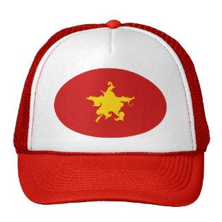 Vietnam Gnarly flaggahatt Mesh Kepsar
