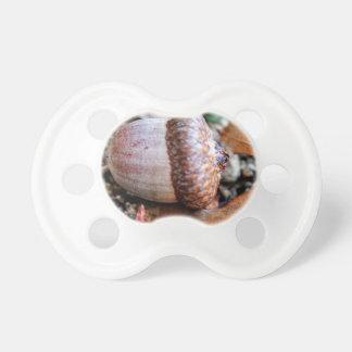 Vila för ekollon napp